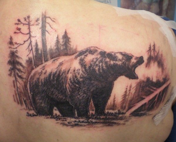 Nice Big Bear In Forest Tattoo On Back