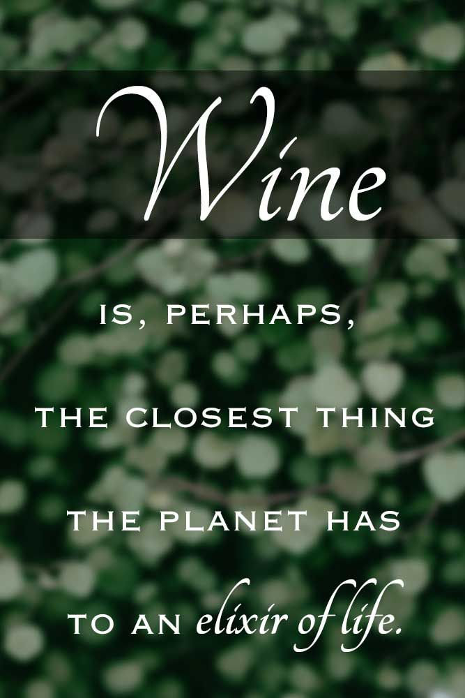 The 20 Most Classy Wine Quotes Of All Time Wine Quotes Drinking
