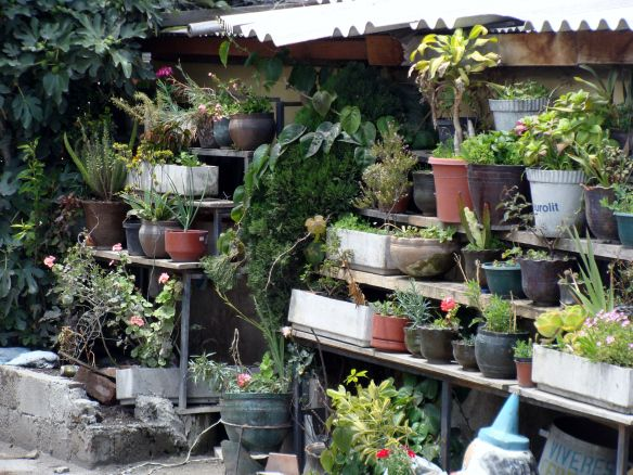 Urban Backyard Garden | Aventuras de Abril | Happy House ...