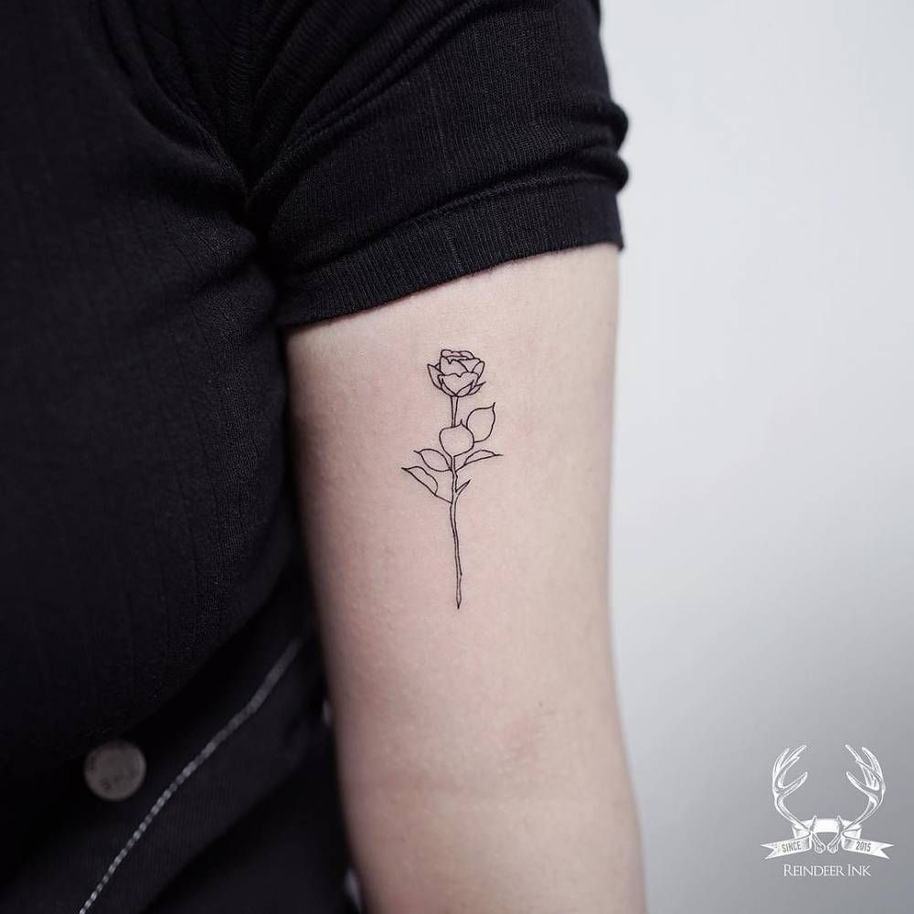 08a79b261bbe4 Fine line rose outline tattoo on the left bicep. | tattoos | Rose ...