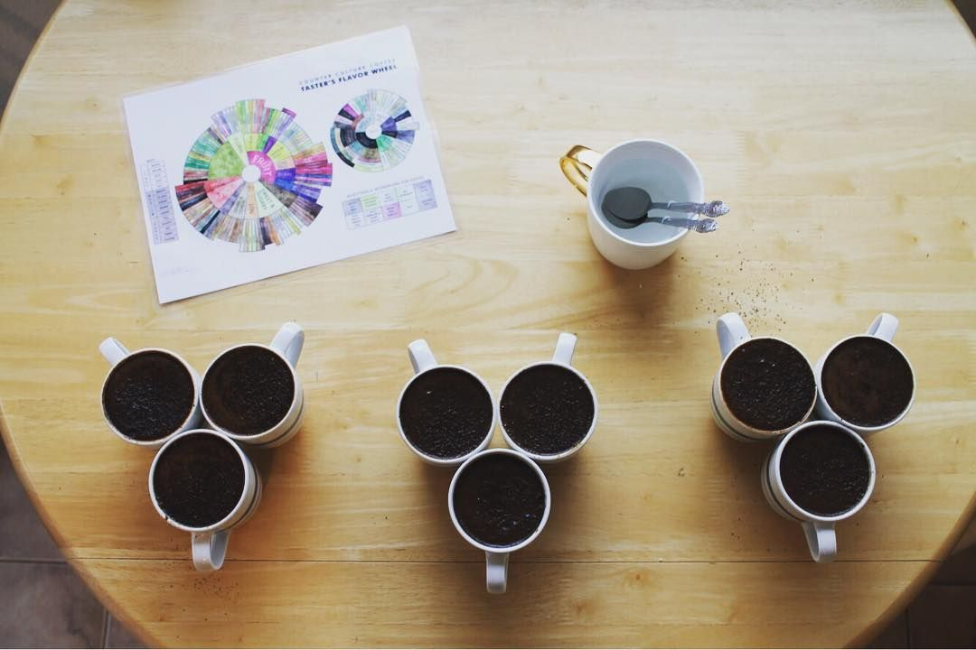 Coffee science breaking down where flavor comes from