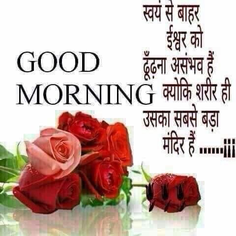 Hindi Quotes Good Morning Greetings Morning Greeting Rose Quotes