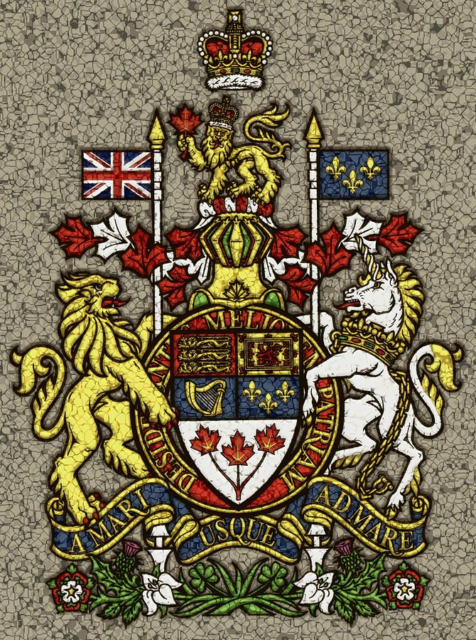 Canadas Coat Of Arms Filled With Symbols Representing The Founding