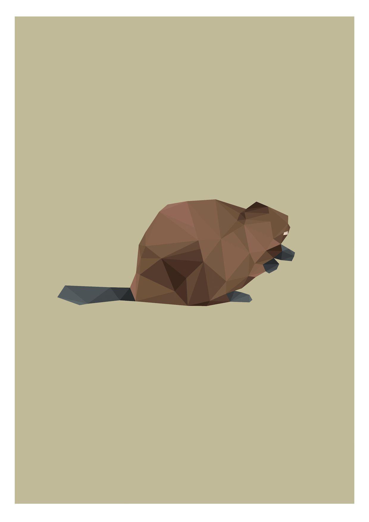 canadian beaver illustration software and digital logos
