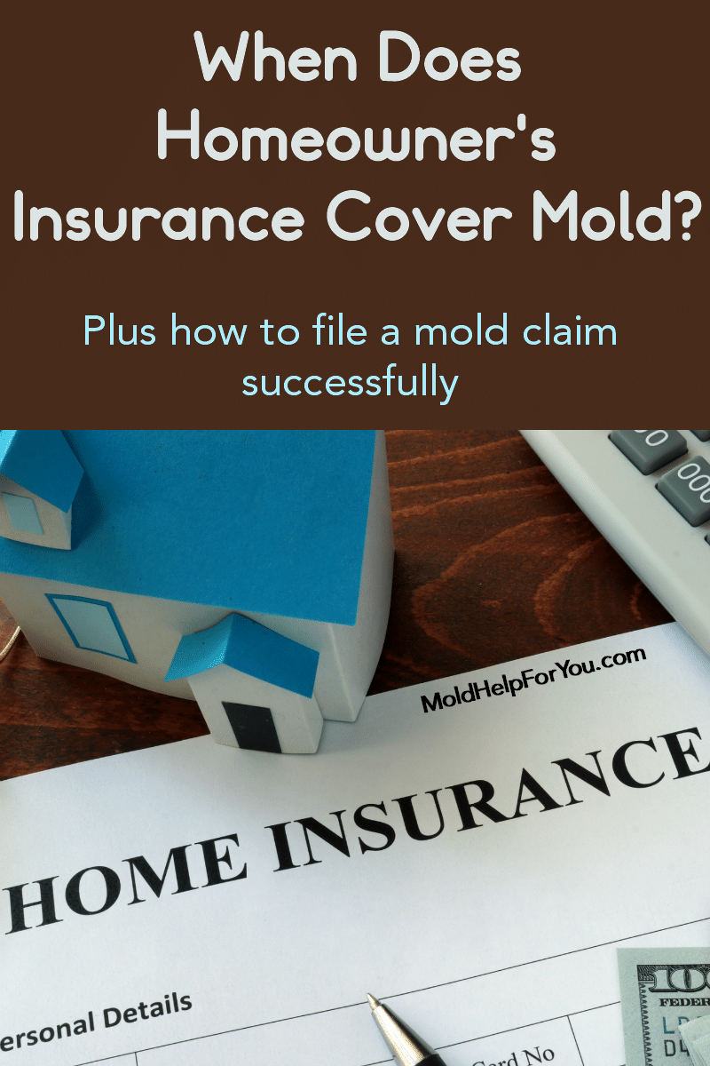 Does Homeowner S Insurance Cover Mold In 2020 With Images