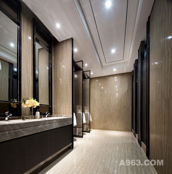 Bathroom, Luxury Toilet, Toilet Cubicle