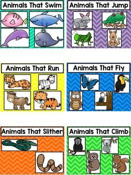 How Things Move Kindergarten Worksheets