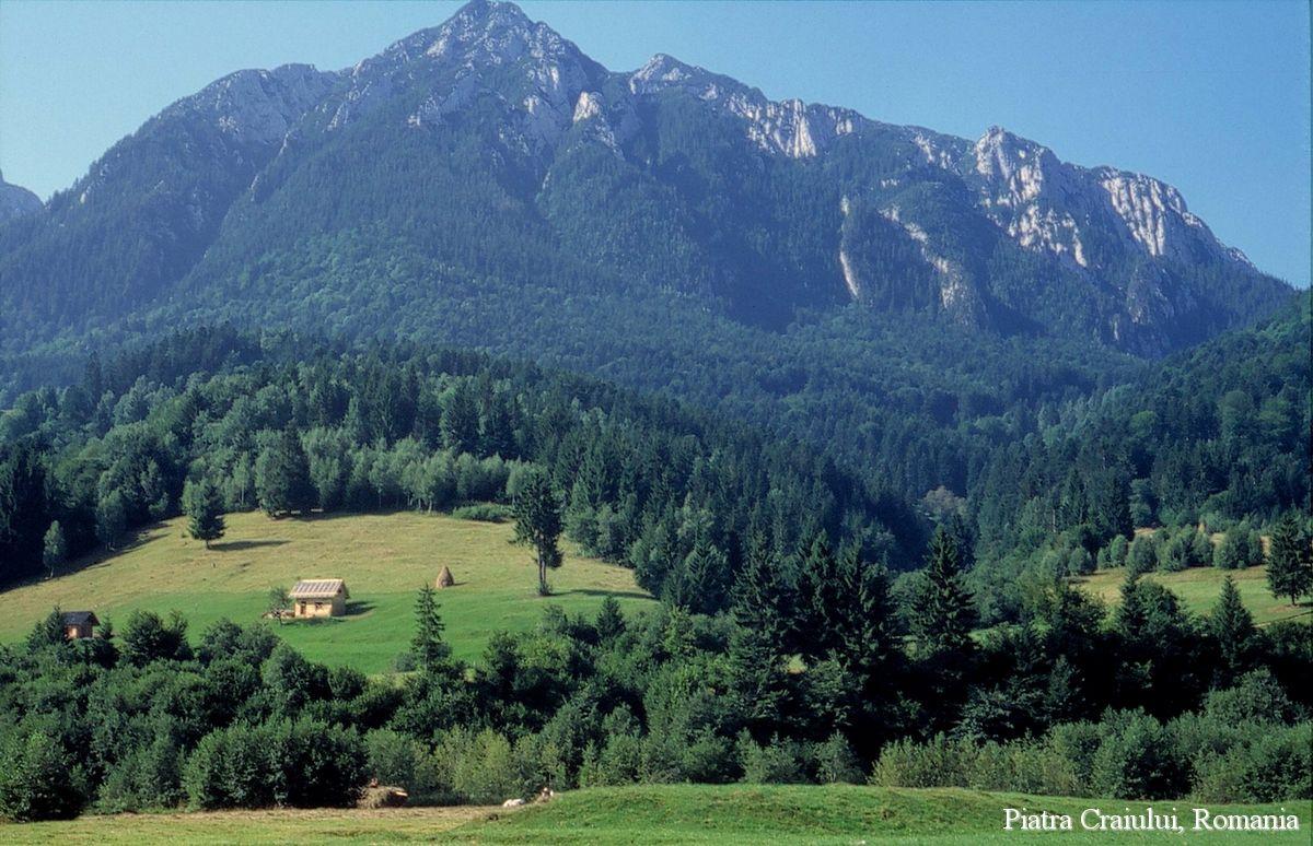 Carpathian mountains view piatra craiului national park for Romania landscape