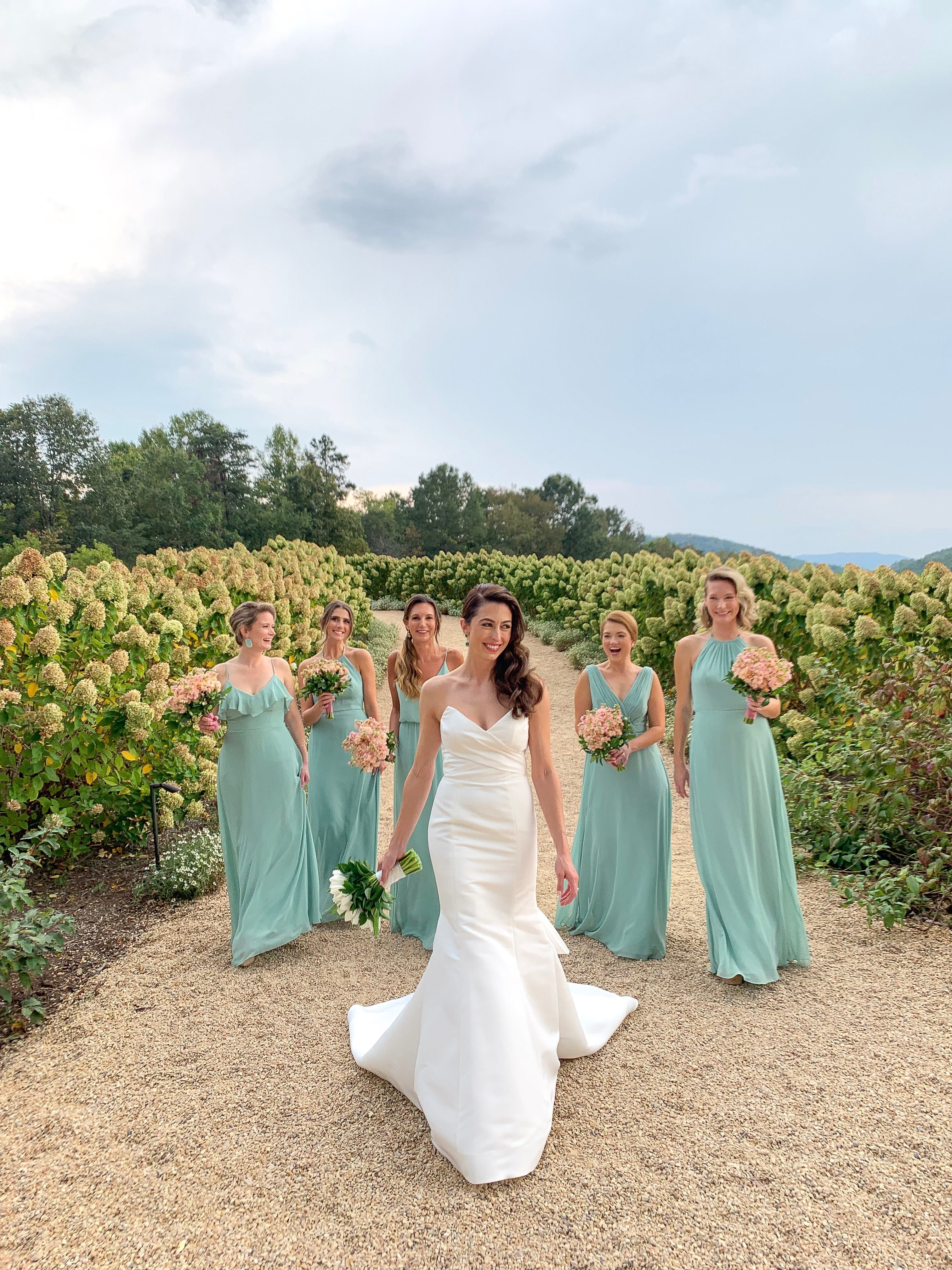 Virginia Winery Wedding Weddings Pippin Hill Light Blue Bridesmaid Dresses Bridesmaids Dress Inspiration Virginia Winery Wedding [ 4032 x 3024 Pixel ]