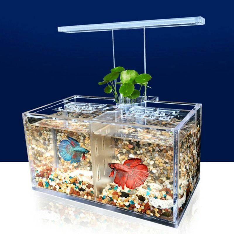 Home mr dog cat betta aquarium led