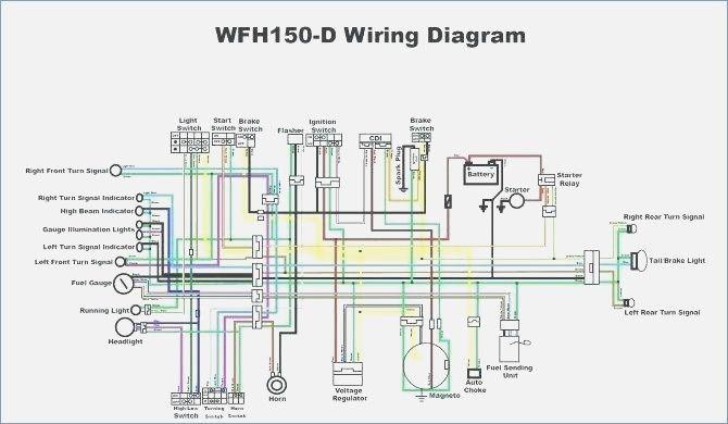 50  70  90  110cc  125cc Wire Harness