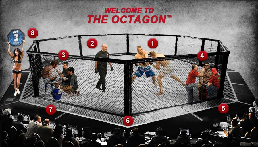 The Octagon Get Inside Octagon Combat Sport Mma