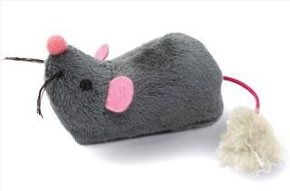Catlinks System Cutie Mouse Cat Toy Insider S Special Review You Can T Miss Read More Cat Toys Cat Toys Cat Fleas Pet Toys