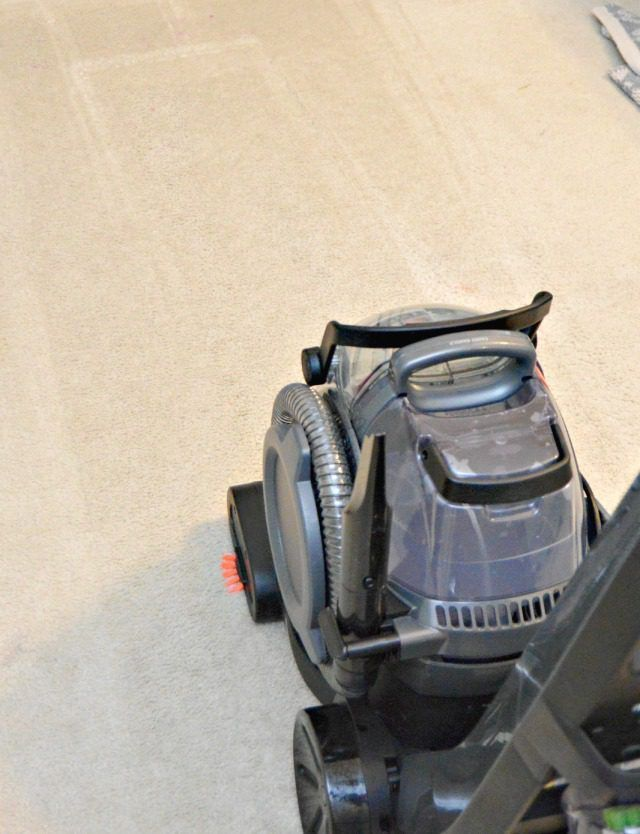 The best homemade carpet cleaner recipes solutioingenieria Gallery