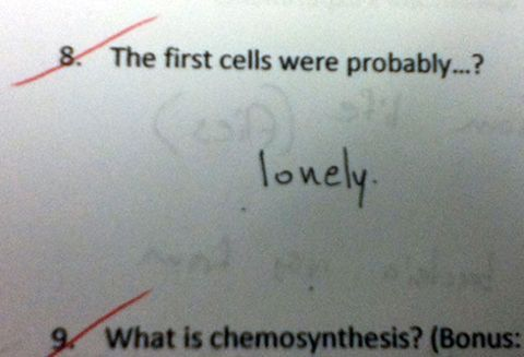 19 ~Sassy~ Exam Answers That Are So Wrong They're Right