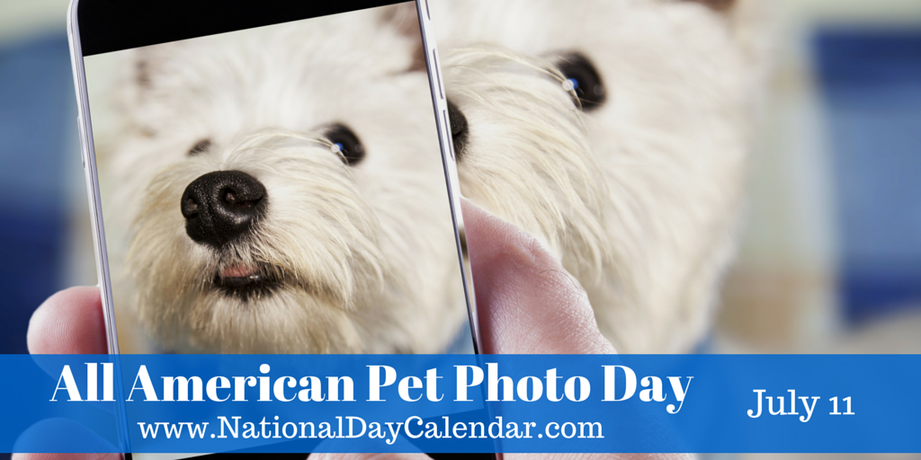 ALL AMERICAN PET PHOTO DAY July 11 in 2020 Pets