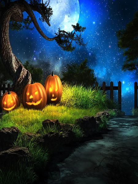 Kate Halloween Forest Backdrops Grass Moon Photo Backdrop Moon - halloween backdrop