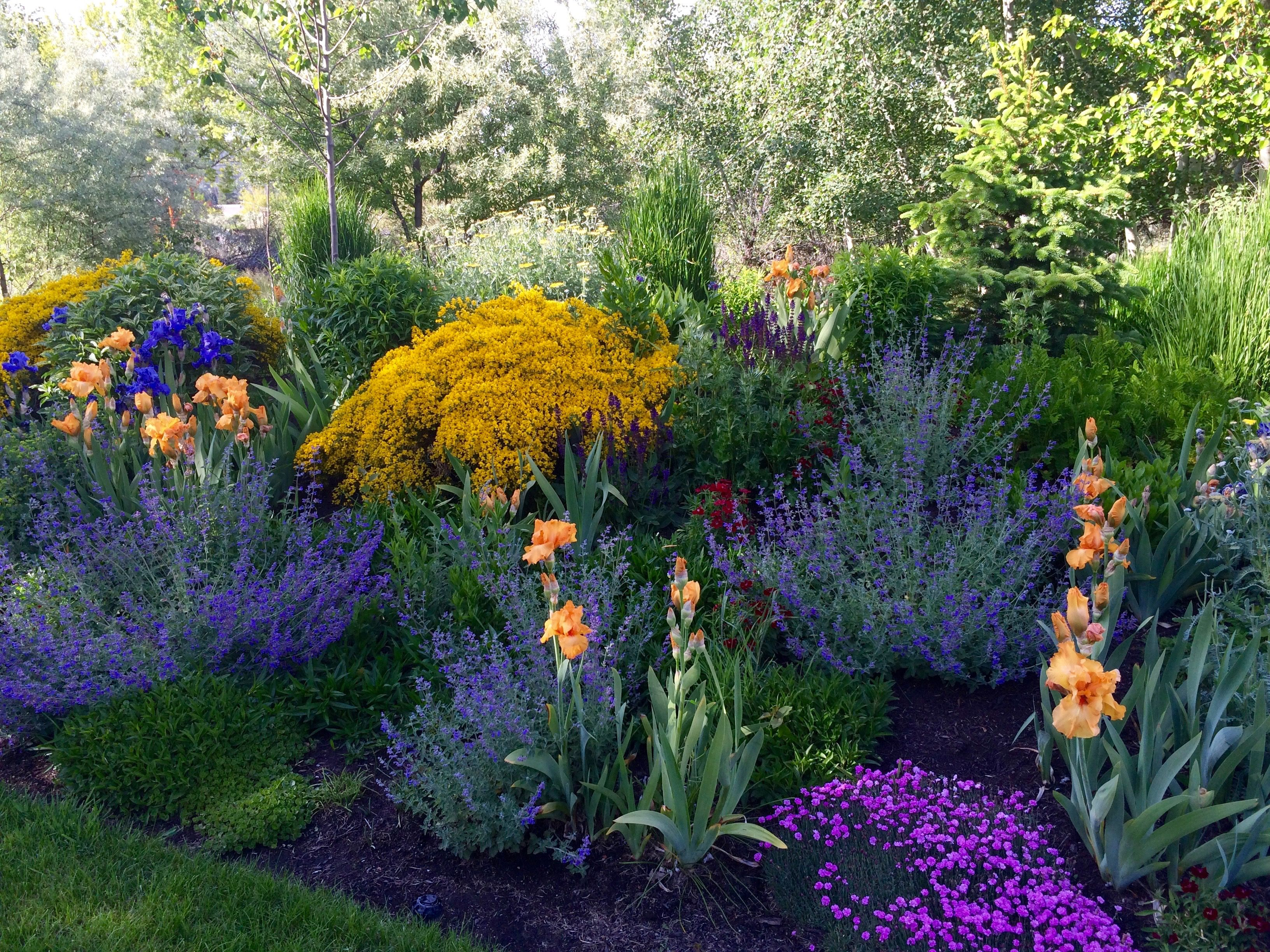 Spring Garden Color Landscape Design Landscape Projects Unique Gardens
