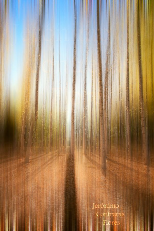 Autumn abstract II by Jeronimo Contreras Flores on 500px