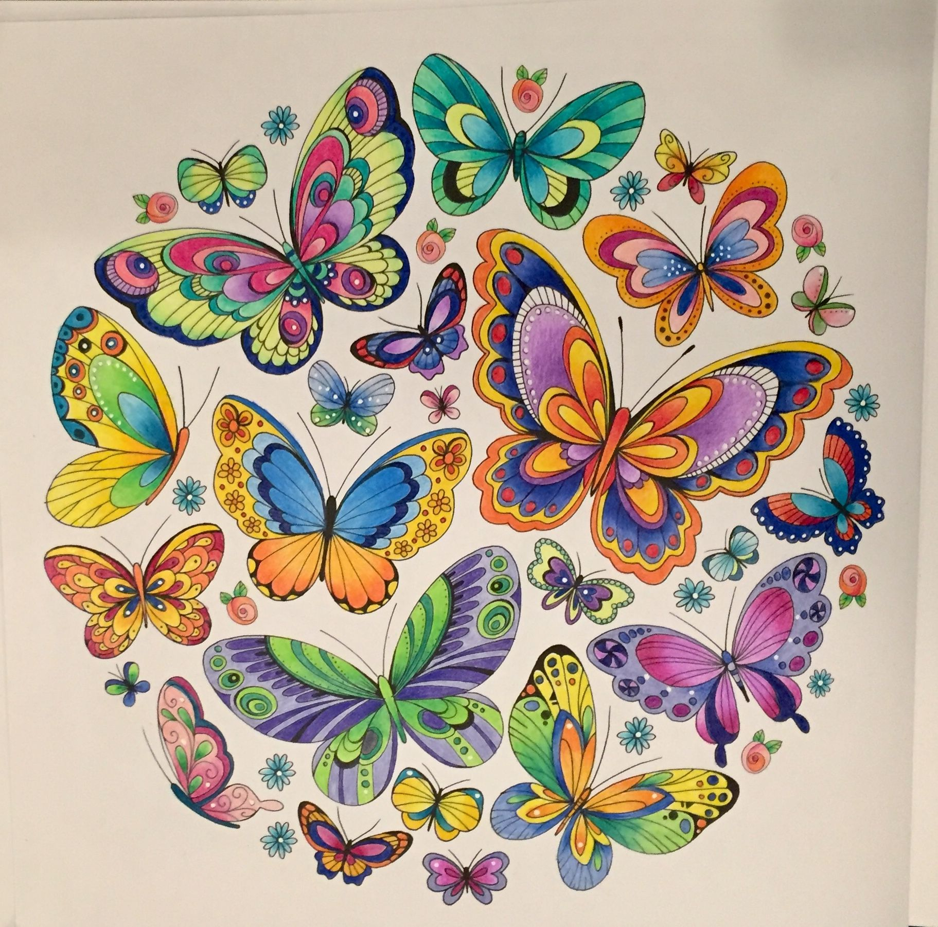 Coloring Butterfly Wallpaper Tips