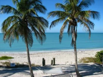 Manasota Key Stretches West Of South Venice Down To Englewood White Sand Beaches Natural Palm Trees Shark Teeth Shelling Ocean Snorkel