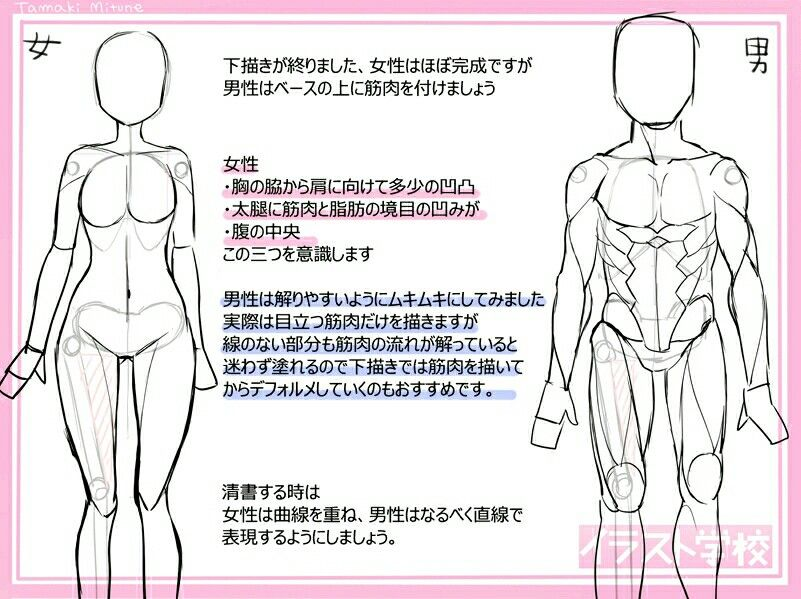 Pin By Zheon On Anime Body Anatomy And Proportions Body Anatomy Memes Lins
