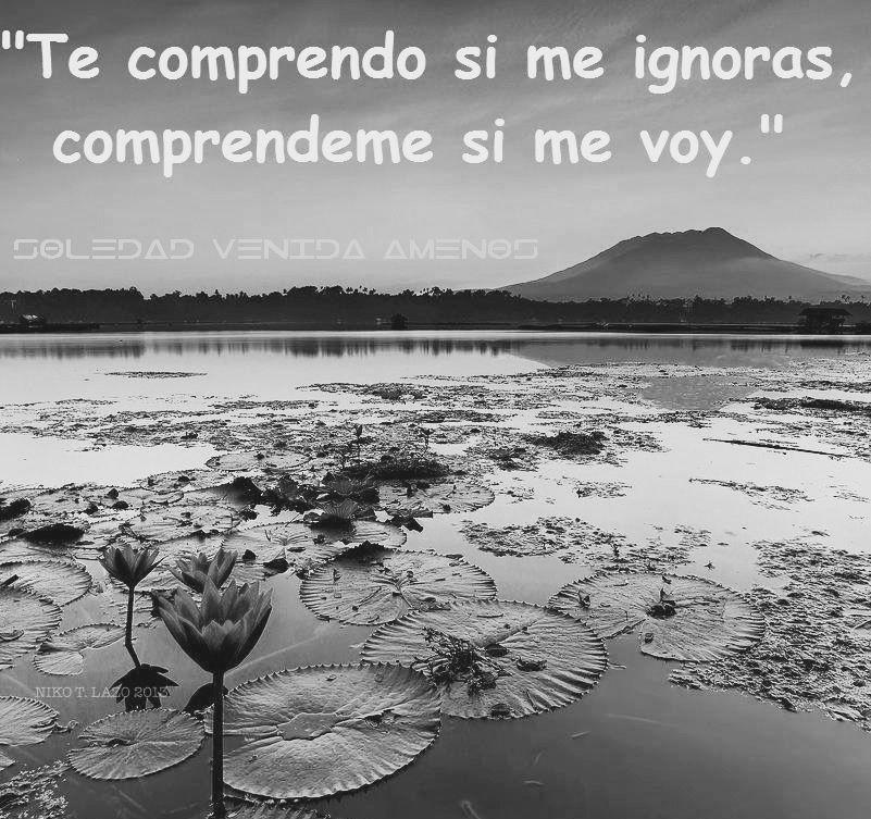 Te Comprendo Si Me Ignoras Compréndeme Si Me Voy