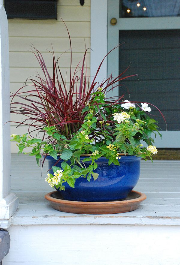 Summer Party Ideas: Decorating with Potted Plants - The ...
