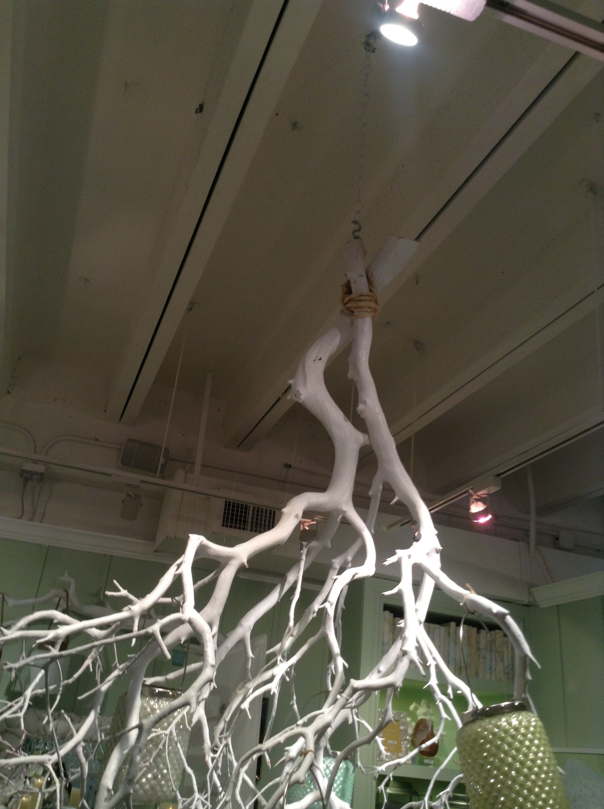 How to tie, secure, the hanging tree branch