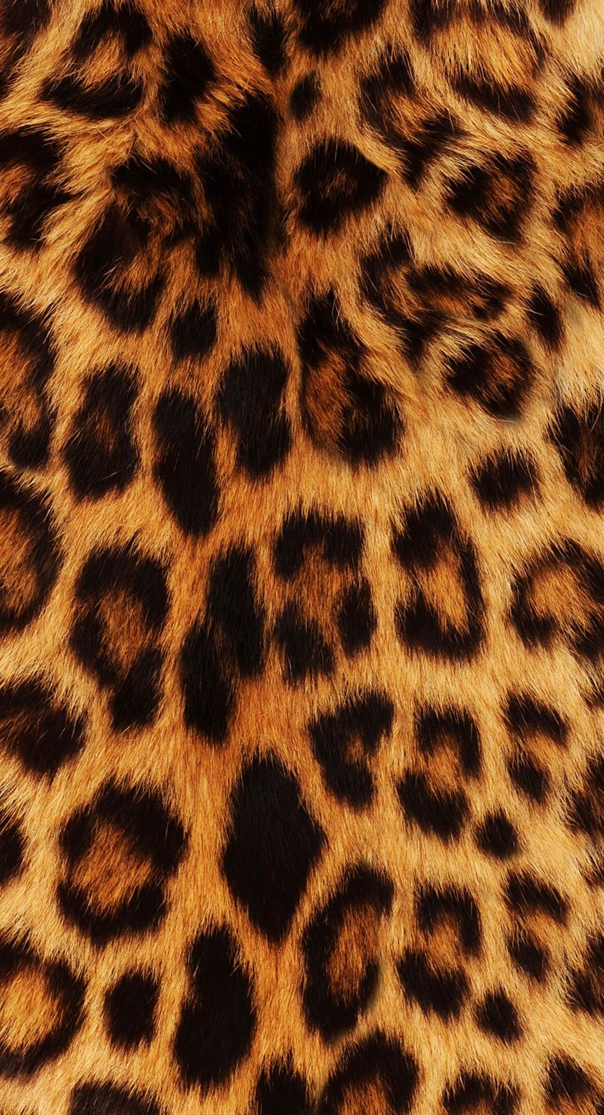 Sfondi per iphone leopardato