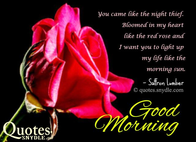 Share this on whatsappexplore these beautiful and romantic good share this on whatsappexplore these beautiful and romantic good morning quotes with images to have a good start mornings are very important in a persons m4hsunfo