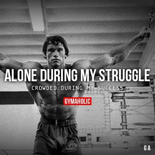Alone During My Struggle Crowded During My Success. Arnold Schwarzenegger  Moreu2026