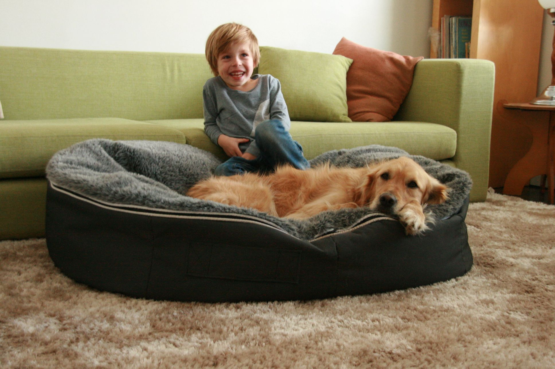 Groovy Ambient Lounge Dog Bean Bag Designer Dog Beds Dog Bed Theyellowbook Wood Chair Design Ideas Theyellowbookinfo
