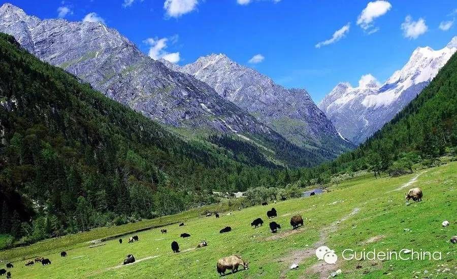 Dogu Turkistan Altay Kazag Bolgesi Eastern Turkistan Altay Kazag Region دوغو تورکیستان آلتای کازاق بولگه سی Living In China Hiking Trails Travel