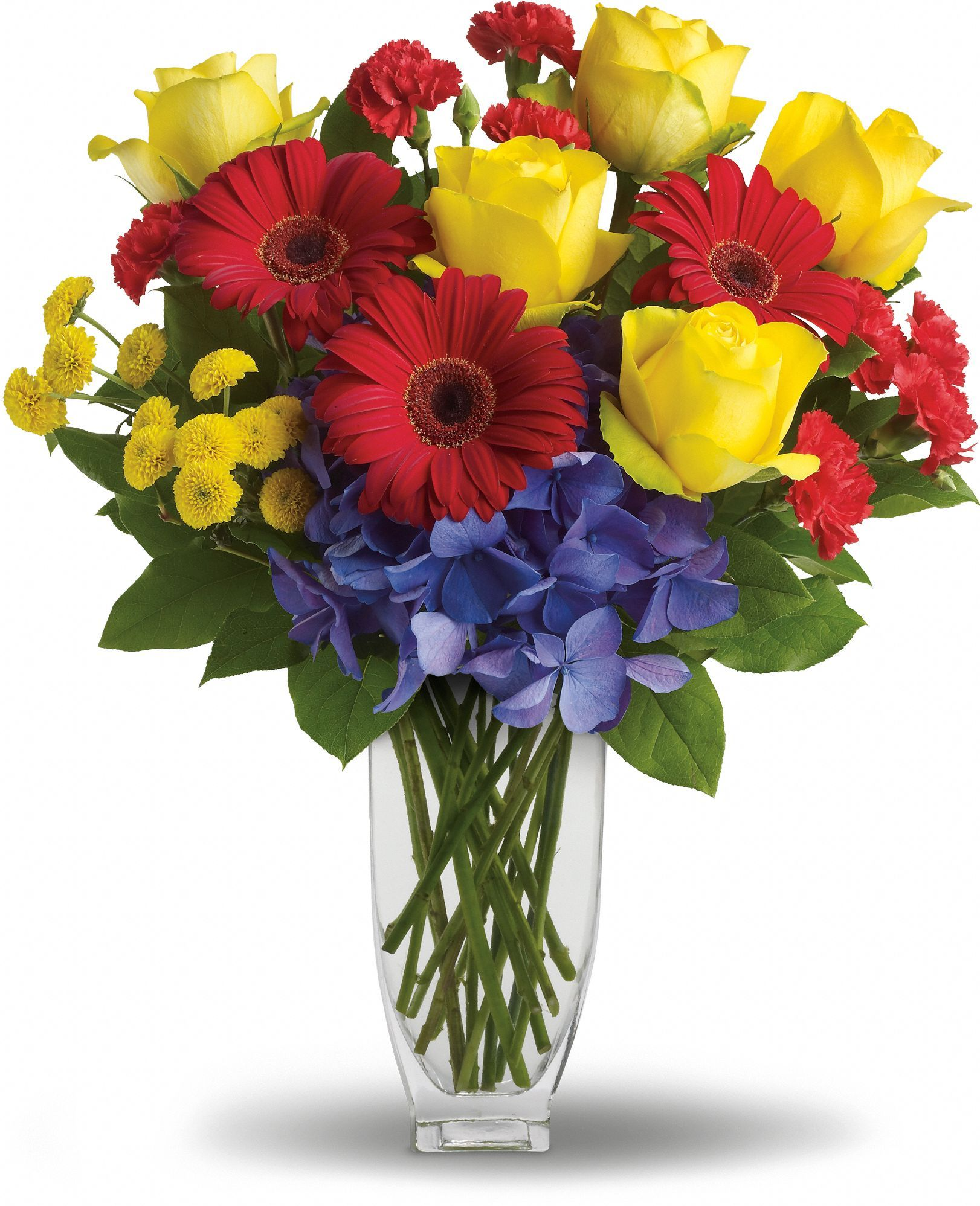 Heres to you by teleflora save 25 on this bouquet and many heres to you by teleflora save 25 on this bouquet and many others with coupon reviewsmspy