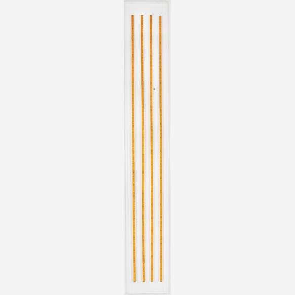 Cildo Meireles<br> Fontes. Montagem com escalas em caixa de acrílico.<br>200 x 1,7 cm.