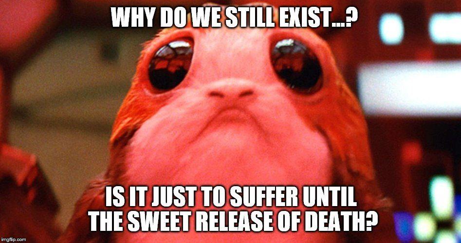Image Result For Porg Meme Memes Clean Memes Star Wars