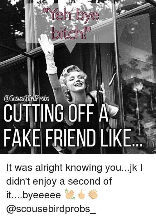 Top 30 Fake Friends Memes