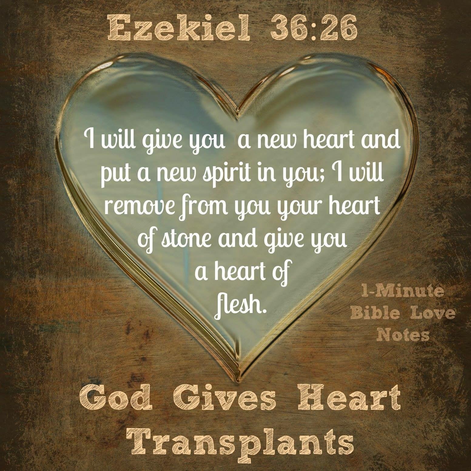 Bible Quotes Heart: Ezekiel 36 New Heart, New Spirit ...