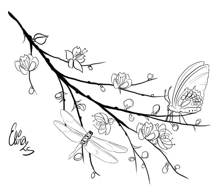 dragonfly and butterfly perching on cherry blossom tree branch coloring page - Cherry Blossom Tree Coloring Pages