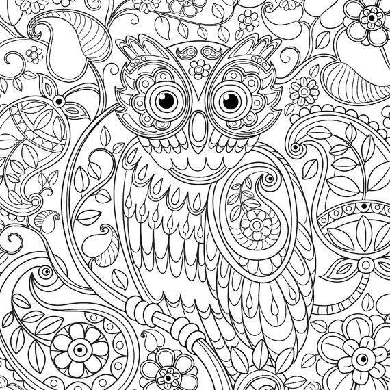Cute Owl Paisley Pattern Adult Coloring Page by lauranikielart ...