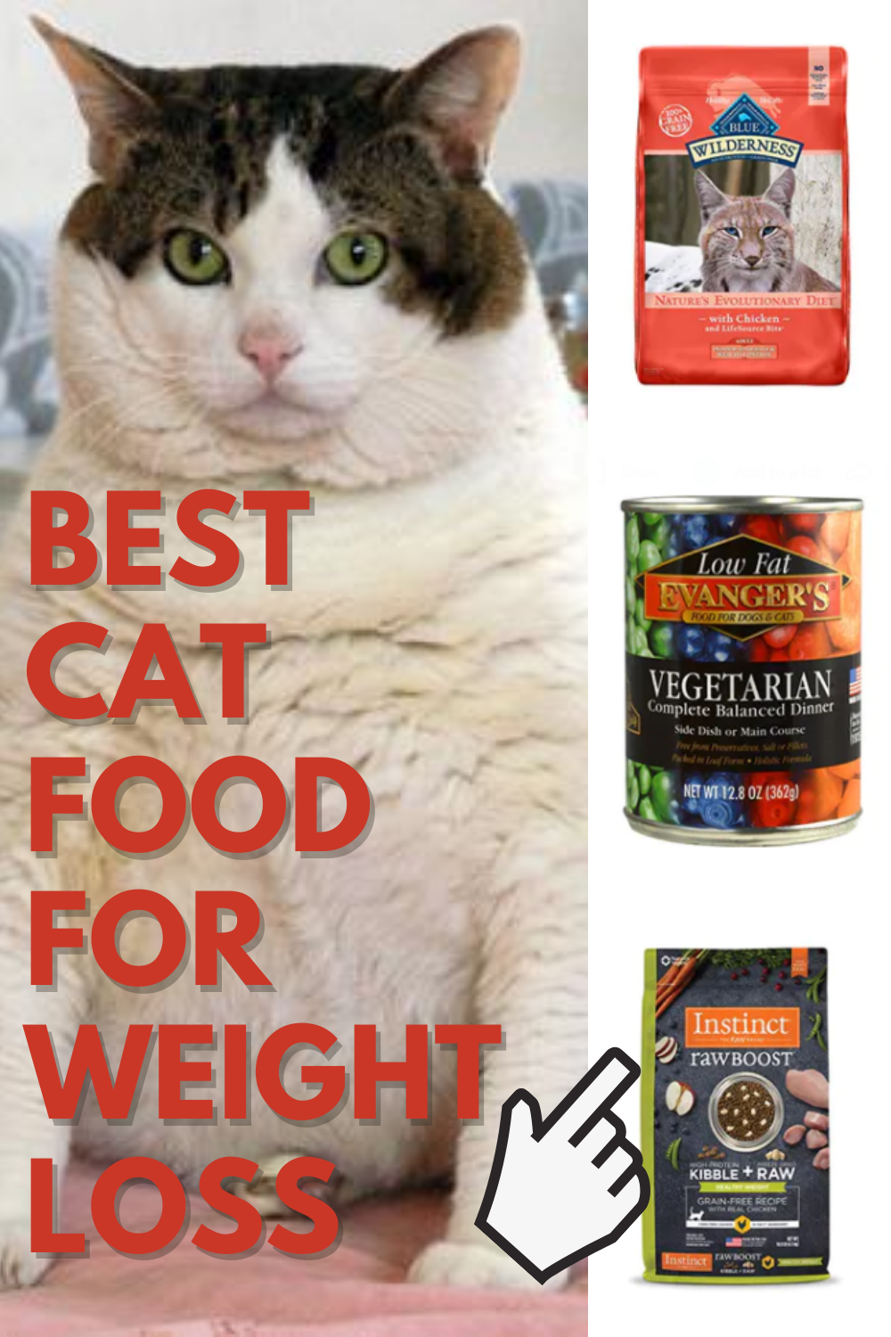 Pin On Best Cat Food