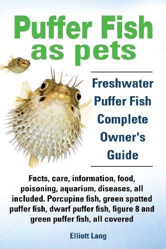 20 cut off puffer fish as pets freshwater puffer fish for Freshwater puffer fish care