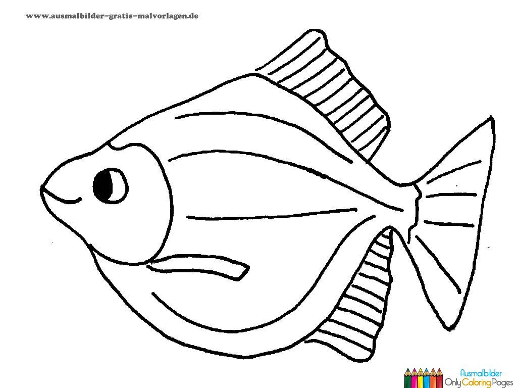 ausmalbilder fische gratis … | Pinteres…