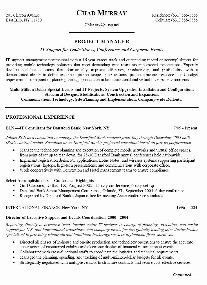 Information Technology Consultant Resume Luxury Healthcare