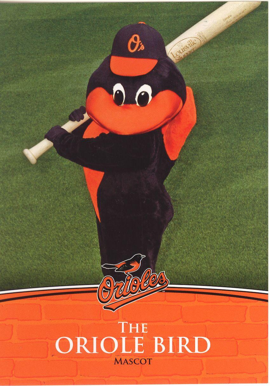 Oriole Bird! Cutest mascot in MLB! Baltimore orioles