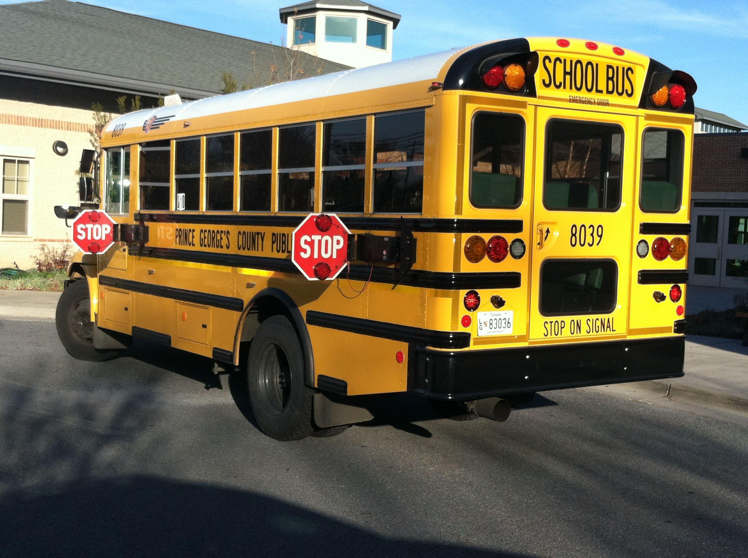 Pin On School Buses