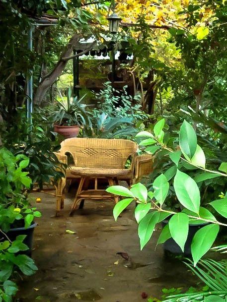 Кипр в моем сердце -      Ботанический  сад.  Везде  на  территории  парка  встречаются  зоны  отдыха.