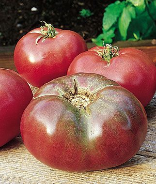 Tomato Cherokee Purple With Images Purple Tomato 400 x 300