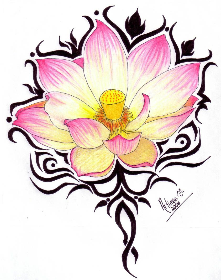 Beautiful Lotus Tattoo That Again I Would Choose To Substitute A